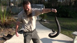 Snake Removal Professionals in North Florida