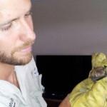 Baby Bat Removal