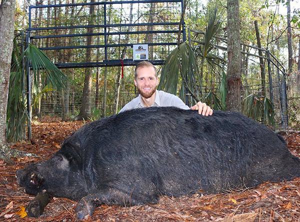 Best Wild Hog Catcher of North Florida